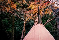紅葉キャンプ