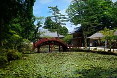 連間の池と連珠橋