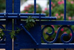 閉ざされた門