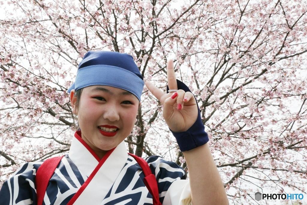 北浅羽桜まつり
