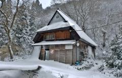 暖冬の雪化粧
