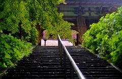 深緑の二天門