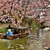 春色の八幡堀
