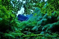 深緑の三重塔