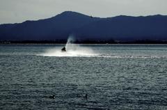 湖上のマリンジェット