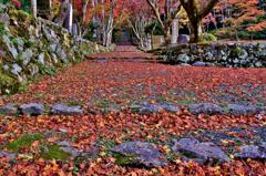 秋深し古の足音