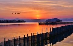 魞のある夕景 落陽