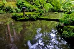 深緑の金剛輪寺明寿院北庭