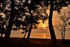湖辺の朝日