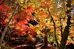 秋彩の石道寺