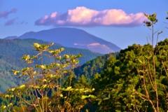 伊吹山の笠雲