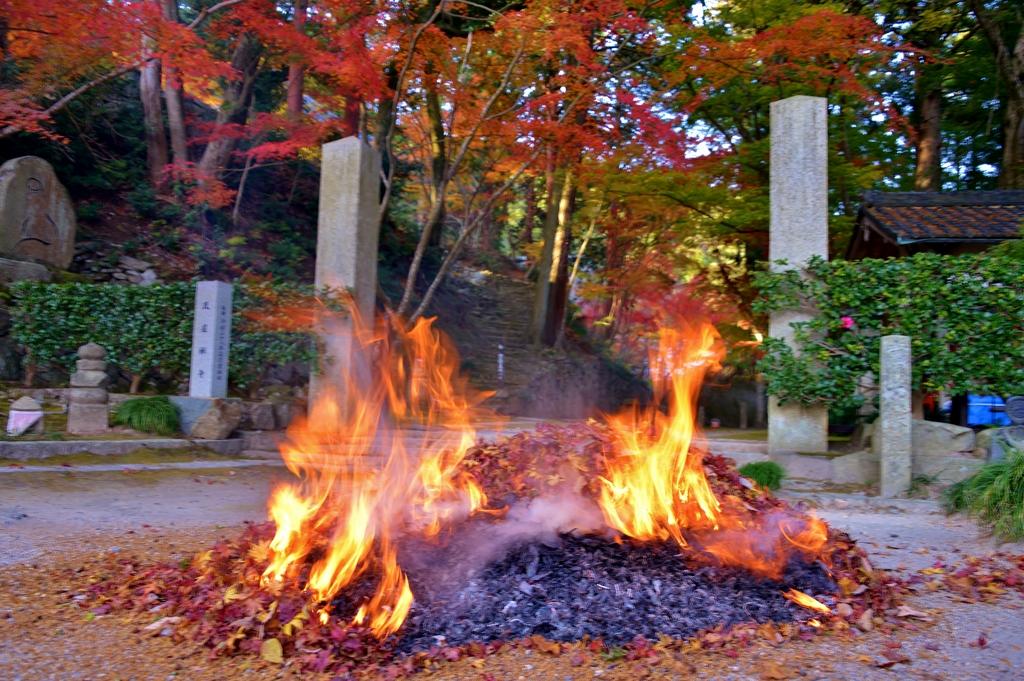 落葉焚き火