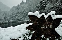 冬のもみじ池