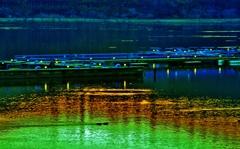 余呉の明け灯り桟橋