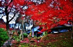 紅葉の石道寺