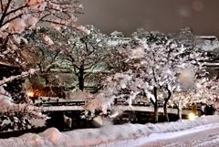 雪夜景・彦根城 Ⅲ