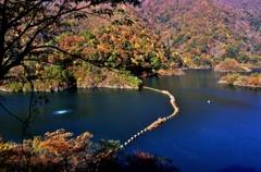 深秋の白龍湖(姉川ダム) 3-3