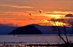 冬夕暮れの竹生島