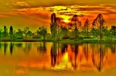 新緑の曽根沼夕景