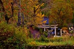 山間の晩秋の社