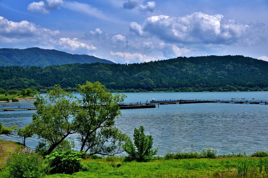 初夏の余呉湖