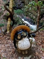 滝案内狸 白蛇の滝