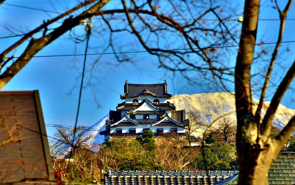 彦根城と伊吹山