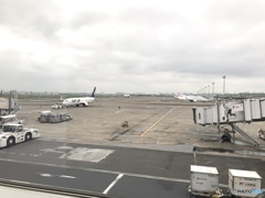 只今、羽田空港です