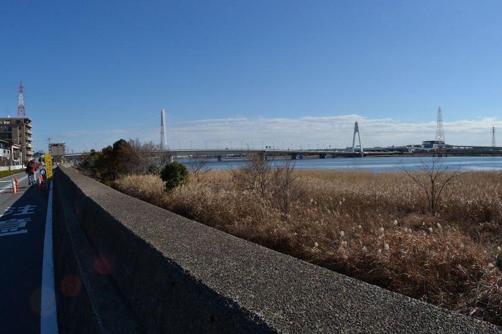 多摩川敷(河口方向)