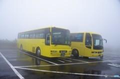 日曜どうでしょう・・・(どどん! 島内観光バス