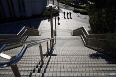 冬のひざし・・・階段
