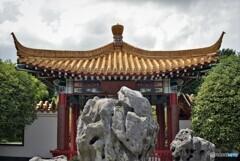 nikkor で撮った china‐garden