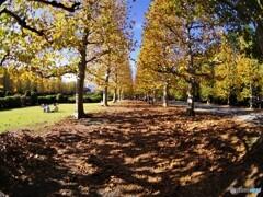あきの公園