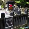 MUSEUM Shop  & Cafe