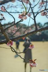 春を摑まえる人