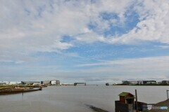 今日の多摩川河口