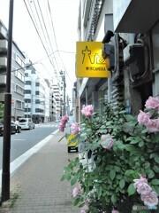 東京CAMERA・・・お写んpo
