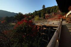 山、赤、赤、寺の朝