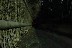 嵐山の影法師