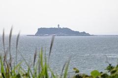 稲村ケ崎から江の島を見る