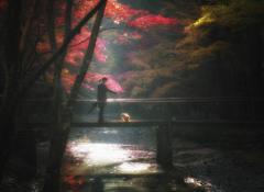 紅葉風景 #8