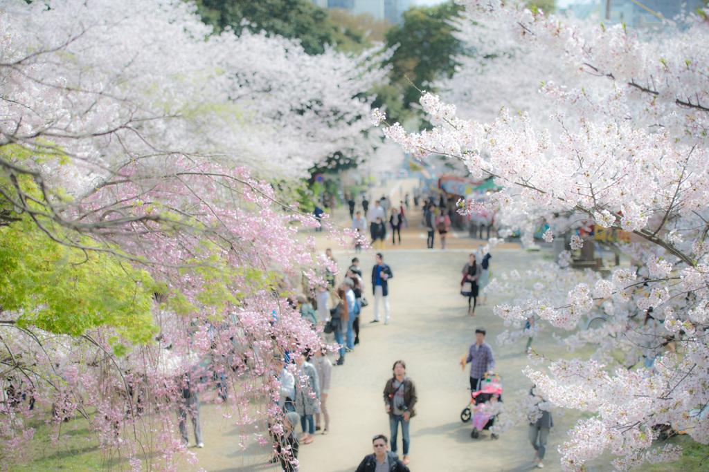 西公園「福岡県」