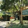 森ラジオ駅