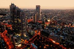 TOKYO LUXURY