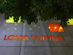 LOUIS VUITTON の壁は厚かった