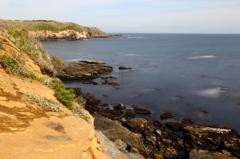 城ヶ島南岸の春海