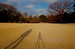 僕とカメラと新宿御苑