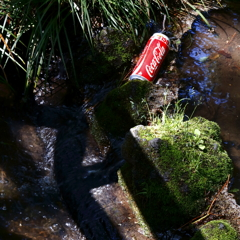 ひとり寂びしく コカ・コーラ