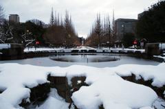 雪の銀杏並木