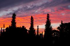夕焼け雲-オレンジ色の幻影